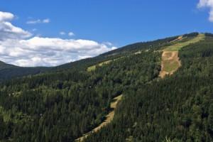 Špindlerův Mlýn je velkým lákadlem i pro vyznavače mountbikových sjezdů
